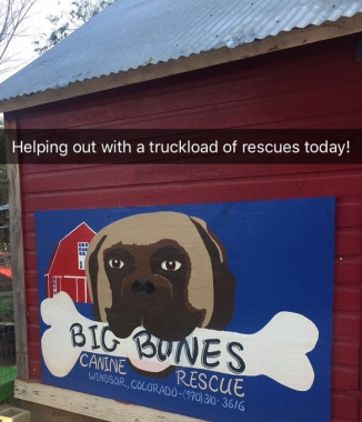 Big Bones Rescue Sign